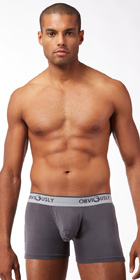Obviously Naked Boxer Briefs with Contour Pouch