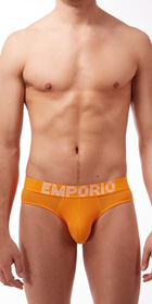 Emporio Armani Big Eagle Briefs