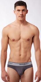 Obviously Naked Hipster Briefs with Contour Pouch