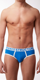 Private Structure Contour Brief