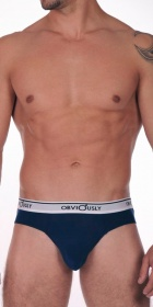 Obviously Chromatic Brief