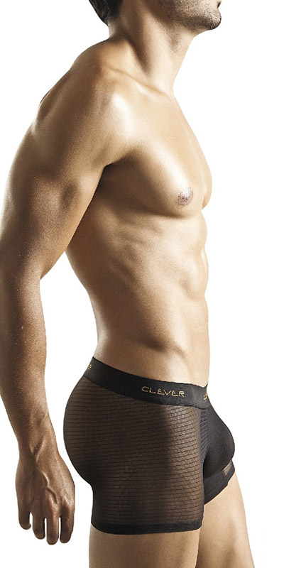 Clever Sheer Mesh Bars Boxer