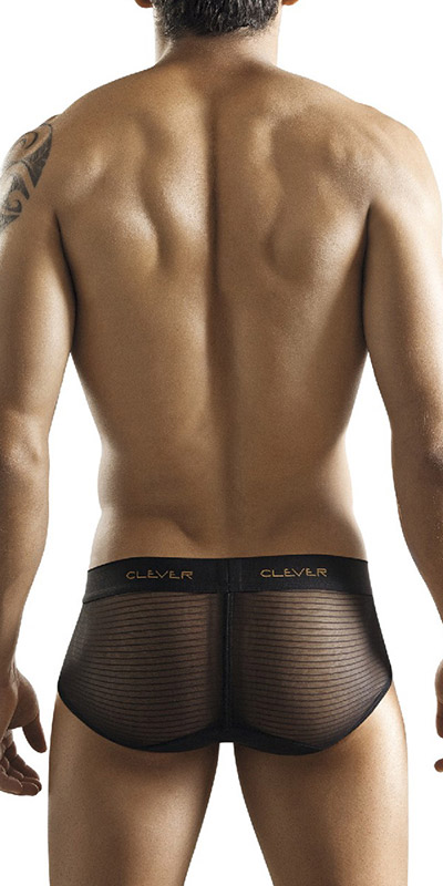 Clever Sheer Mesh Bars Brief
