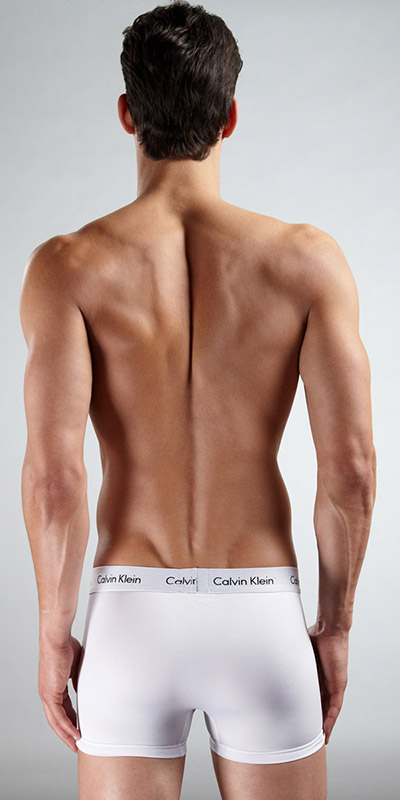 Calvin Klein Micro Stretch 2-Pack Trunks