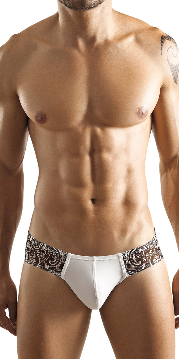 Clever Voyeur Sheer Mesh Brief