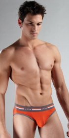N2N Bodywear Quantum Brief