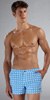 "Parke & Ronen Printed Angeleno 2"" Swim Short"