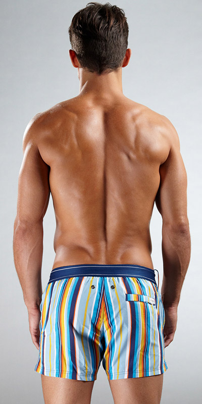 2XIST Stripe Woven Ibiza Swim Short