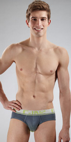 C-IN2 Gradient Lo No Show Profile Brief