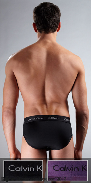 Calvin Klein Micro Stretch 2-Pack Hip Brief