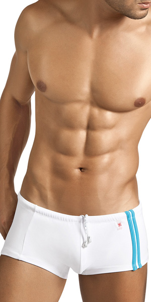 Clever Lines Swimsuit Trunk