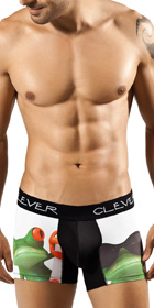 Clever Relax Frog Boxer