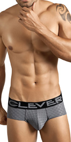 Clever Niagara Brief