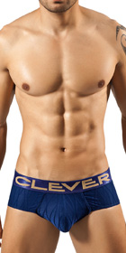 Clever Desert Classic Brief