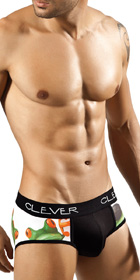 Clever Relax Frog Brief