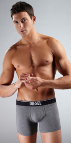 Diesel Essentials Sebastian Boxer Brief