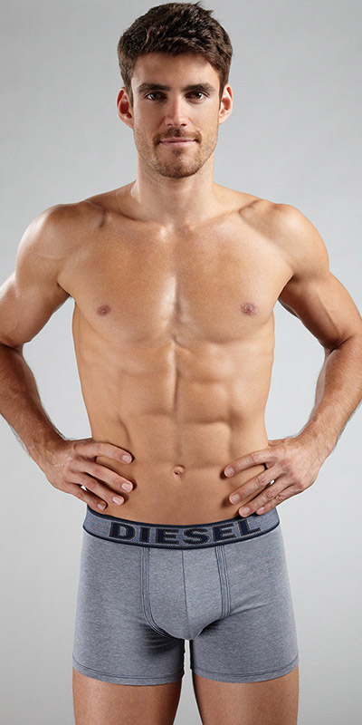 Diesel Under Denim Sebastion Boxer Briefs