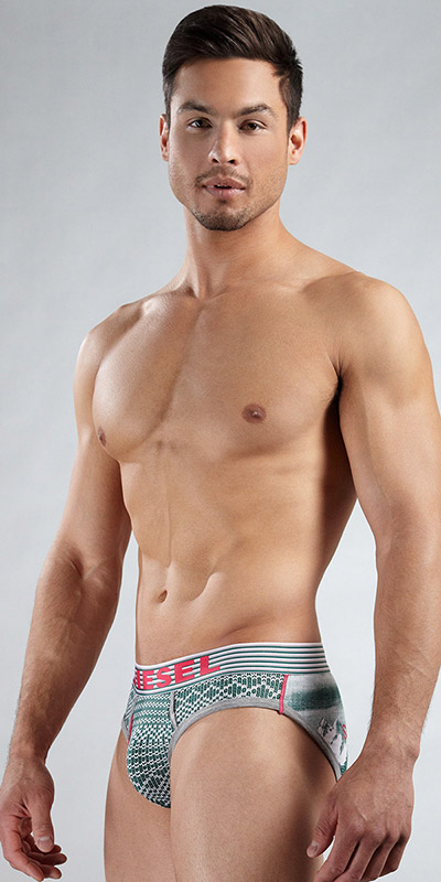 Diesel Seasonal Blade Brief