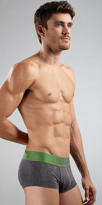 Emporio Armani Cotton Stretch Basic 5m Trunk