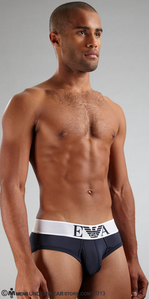 Emporio Armani Microfiber Eagle Brief