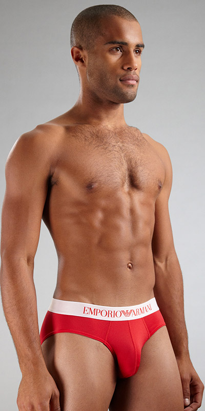 Emporio Armani Microfiber Stretch Brief