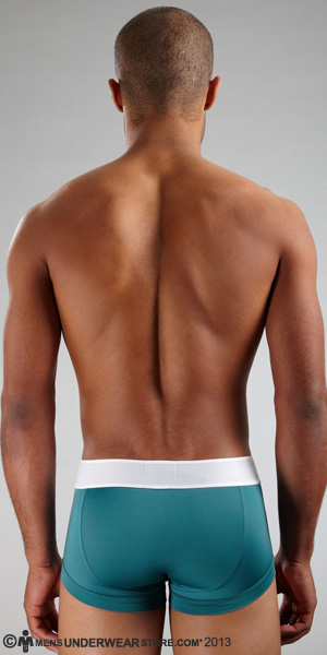 Emporio Armani Microfiber Eagle Trunk