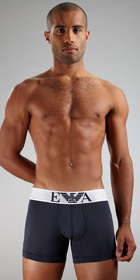 Emporio Armani Microfiber Eagle Boxer