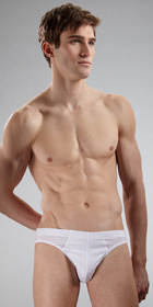 Hanro Cotton Sensation Brief