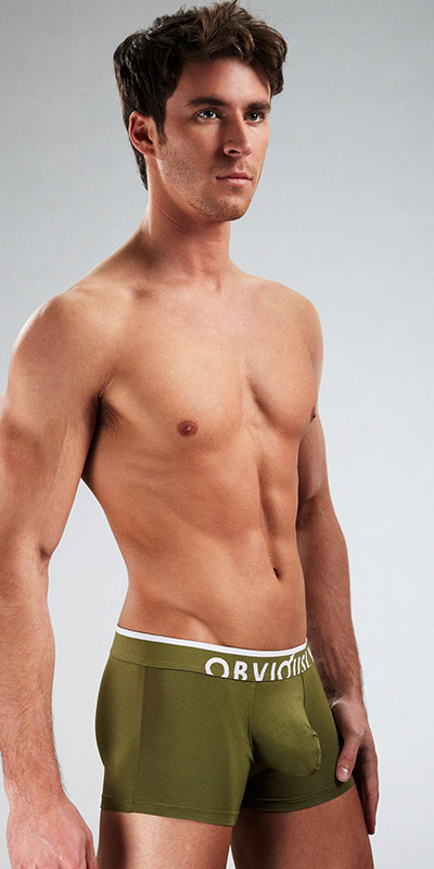 Obviously Chromatic Low Rise Boxer Briefs with Anatomical Pouch