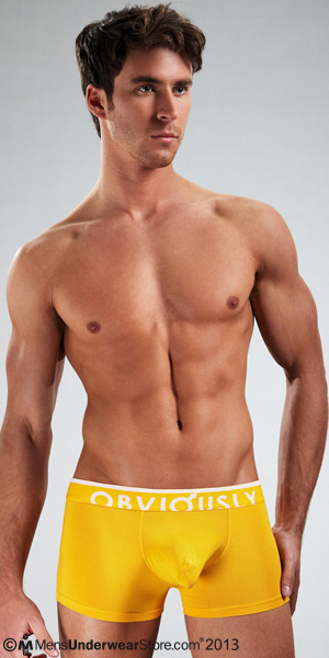 Obviously Chromatic Low Rise Boxer Brief