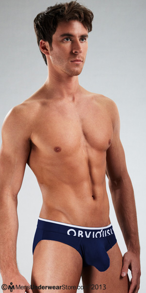 Obviously Chromatic Low Rise Brief