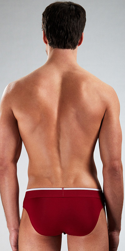 Obviously Chromatic Low Rise Brief with Anatomical Pouch