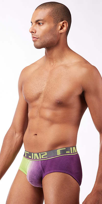 C-IN2 Dip Dye Profile Brief