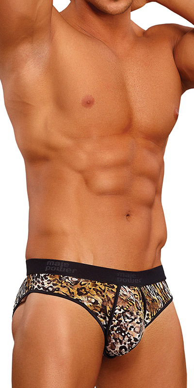 Male Power Leopard Enhancing Bikini