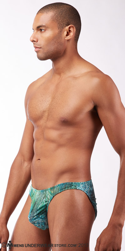 Male Power Peacock Low Rise Bikini