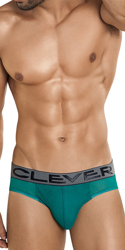 Clever Chicago Brief