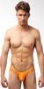 N2N Bodywear Power G Swimsuit