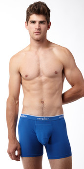 Obviously Chromatic Boxer Briefs with Anatomical Pouch