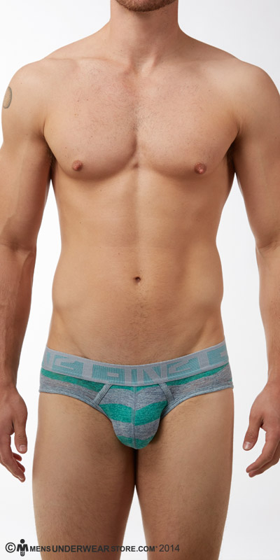 C-IN2 Hand Me Down Lo No Show Profile Briefs