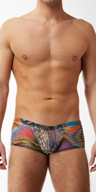 Male Power Aquarius Mesh Mini Shorts