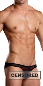 Male Power Euro Male Mesh Brazilian Pouch Bikini