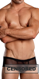 Male Power Euro Male Mesh Micro Mini Pouch Short