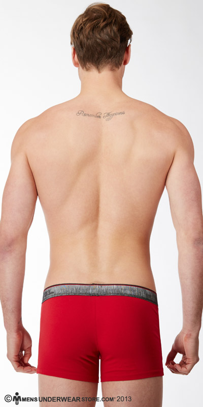 Diesel Industrial Logo Shawn Boxer Briefs