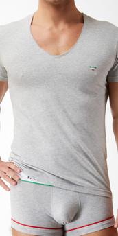 Emporio Armani Italian Flag V-Neck Shirt