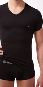 Emporio Armani Big Eagle V-Neck Shirt