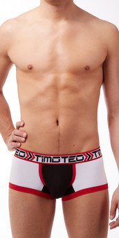 Timoteo Grand Prix Scout Briefs