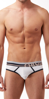 Obviously Naked Urban Hipster Brief