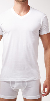 2XIST Pima Deep V-Neck T-Shirt
