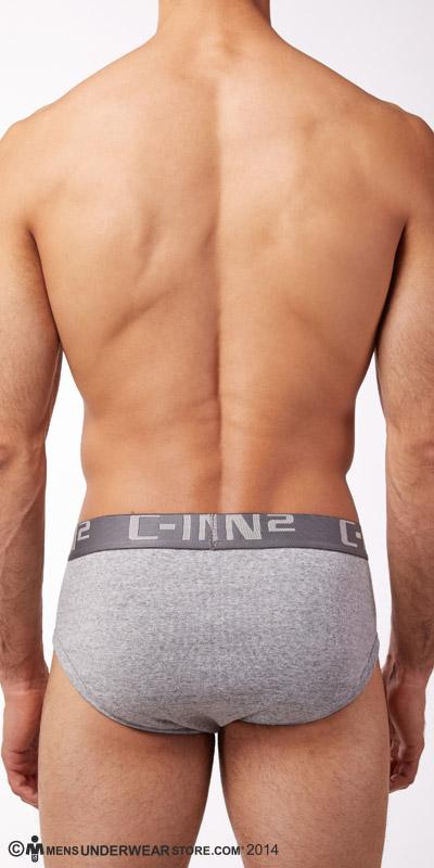 C-IN2 Core Profile Briefs