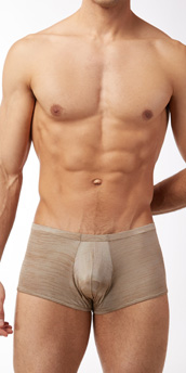 Male Power Rayon Swag Pouch Short